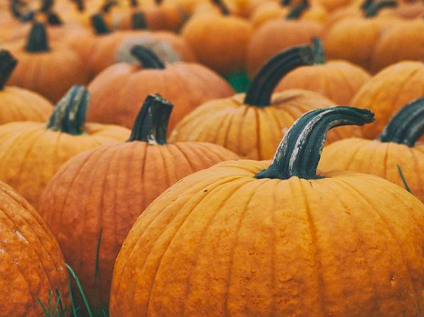 Austin October Events Guide